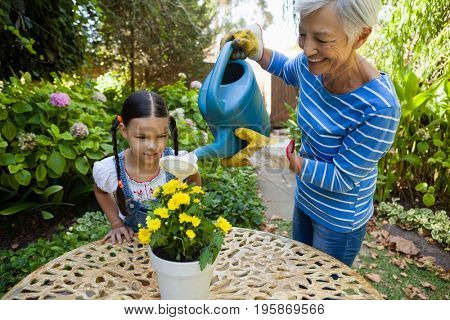 Girl looking while smiling senior woman watering yellow flowers on table in backyard