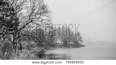 Small romantic lake or river in the fog