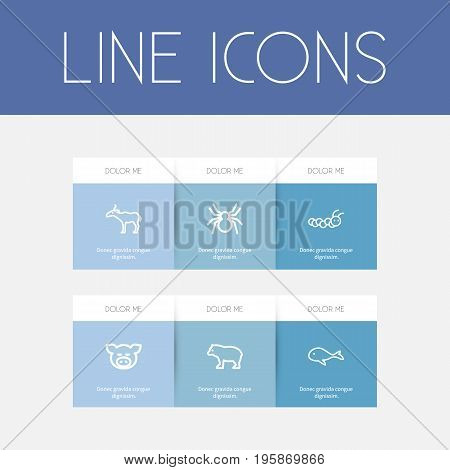 Set Of 6 Editable Animal Outline Icons. Includes Symbols Such As Cachalot, Spinner, Antelope And More