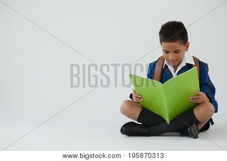 Attentive schoolboy reading book on white background