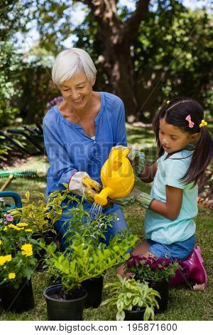 Smiling senior woman and girl watering potted plants in backyard