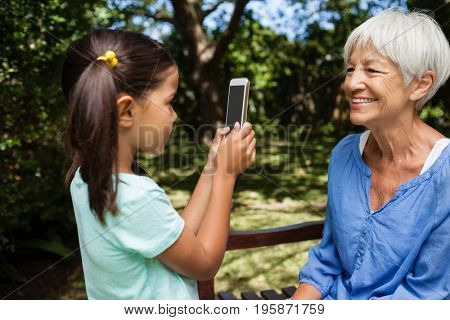 Side view of girl taking photograph of grandmother sitting on bench at backyard
