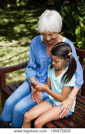 High angle view of smiling grandmother looking at granddaughter using mobile phone on wooden bench at backyard