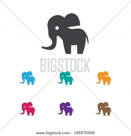 Vector Illustration Of Zoology Symbol On Trunked Animal Icon