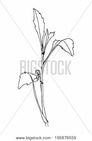 Hand drawn black stylized flower painted by liner. Sketch style. Vector illustration.