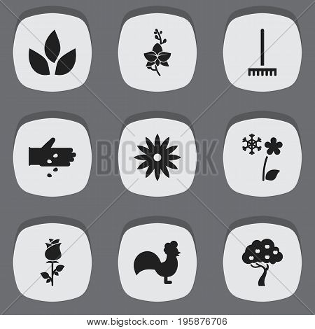 Set Of 9 Editable Gardening Icons. Includes Symbols Such As Blossom, Farm Tool, Rooster And More