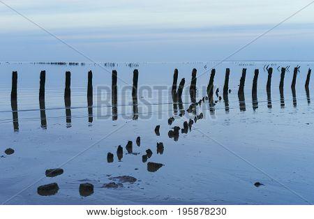 A criss-cross pattern of poles along the Frisian coast of the Wadden Sea around sundown.