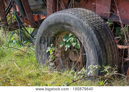 Close up of a rusty old abandoned trailer with peeling paint and wheel  with a flat tyre tire overgrown with vegetation