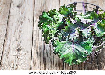 Red kale leaves or Russian kale on wooden background with copy space