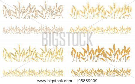 Set of stripes of repeating naturally crossed bunches of cereals