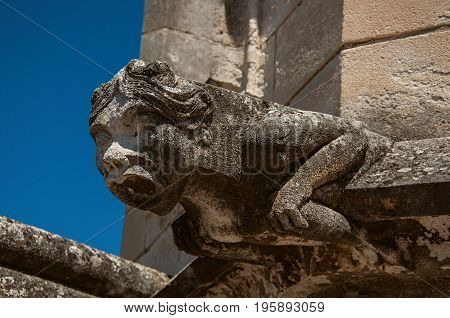 Close-up of a gargoyle on the roof of the Palace of the Popes of Avignon, under a sunny blue sky. Located in the Vaucluse department, Provence-Alpes-Côte d'Azur region, southeastern France