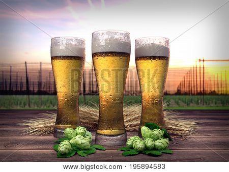 three glasses of beer on wooden desk with hop-garden on background- 3D render