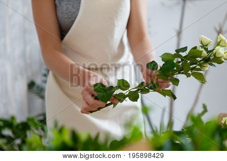 Young florist woman holding flowers