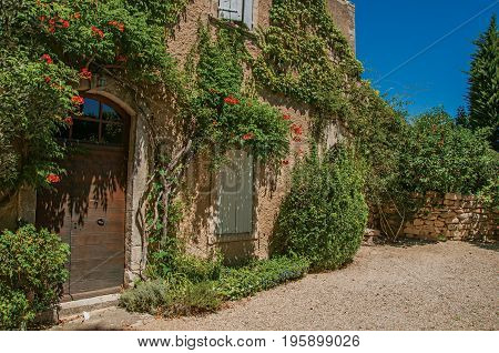 View of typical stone house facing a yard, with sunny blue sky and flowers at the village of Ménerbes. In the Vaucluse department, Provence-Alpes-Côte d'Azur region, southeastern France