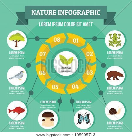 Nature infographic banner concept. Flat illustration of nature infographic vector poster concept for web