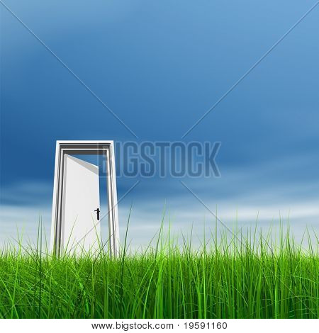 High resolution 3D white door opened in grass to a nice sky background with  clouds