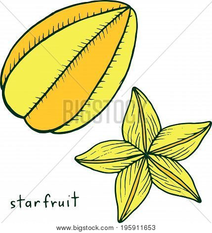 Starfruit coloring page. Graphic vector colorful doodle art for coloring book for adults. Tropical and exotic fruit line illustration.