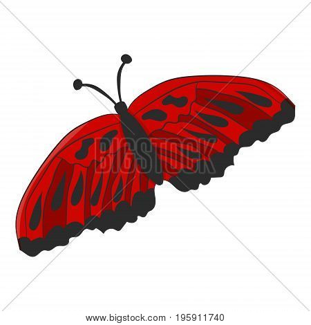 Red moth on white background. Vector illustration. Drawing by hand.