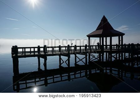 Bird and man on river boardwalk with blue sky and white fog