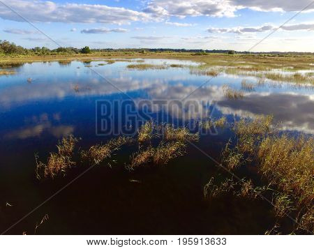 blue sky reflection on wet and grassy green lands
