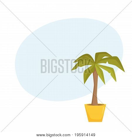 Palm tree in pot. Interior home and office houseplant cartoon vector illistration. Flower growth and gardening.