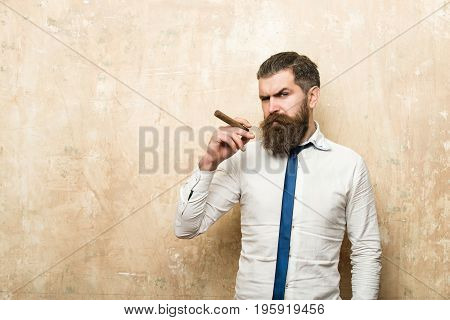 hipster or bearded man with long beard and stylish hair on serious face in tie and white shirt on textured beige background smoking cigar copy space