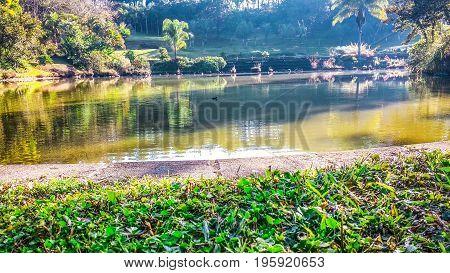 Lago tranquilo en una mañana de mayo