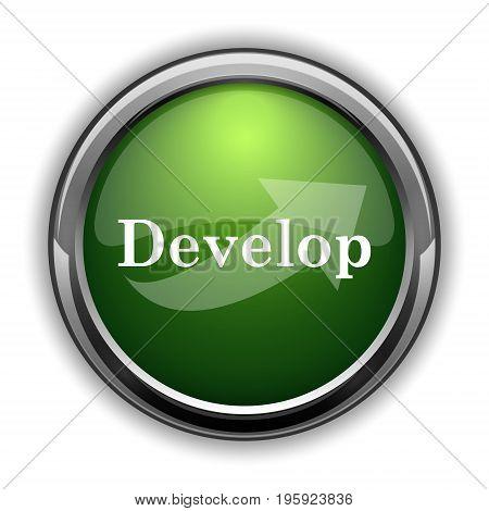 Develop Icon0