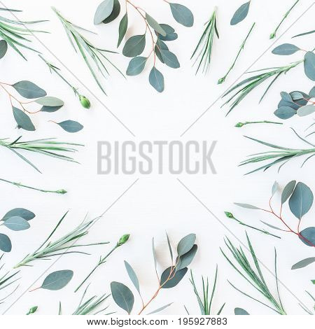 Flowers composition. Frame made of carnation flowers and eucalyptus branches on white background. Flat lay top view square