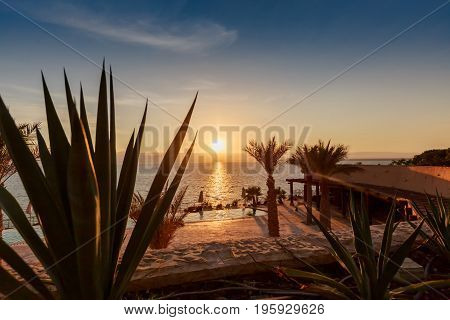 Beautiful sunset at Dead Sea coastline in Jordan. Tropical beach with palm trees and desert plant with pool background.