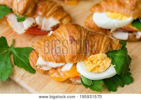 Hot sandwich with mini croissant egg parsley melted cheese chicken ham tomato on wooden cutting board. Healthy starter