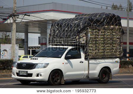 Private Pickup Truck Car Toyota Hilux Vigo.
