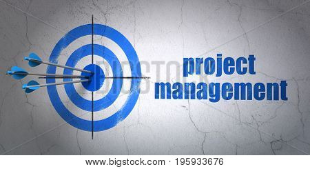 Success finance concept: arrows hitting the center of target, Blue Project Management on wall background, 3D rendering
