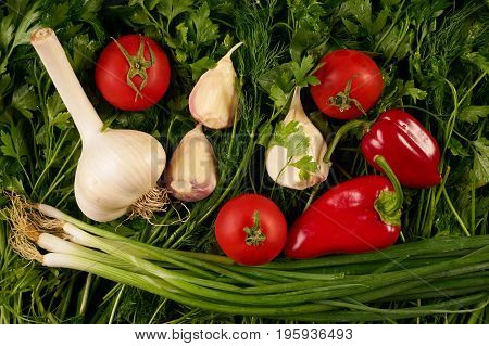 Close-up of a fresh and ripe vegetables and greens. Fresh juicy vegetables tomato garlic bell pepper onions on a greens background. The concept of summer harvest. Healthy vegerarian food and detox.