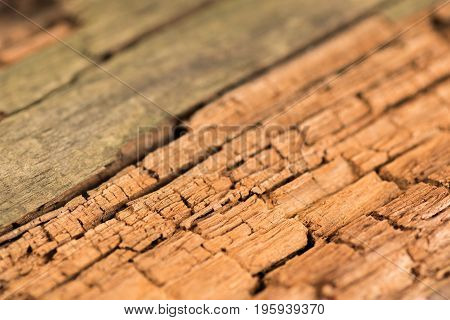 Wood Texture Desk in Perspective Close Up Striped Timber Old Table or Floor Board. Selective focus