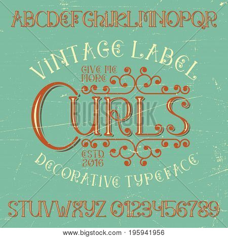 Vintage label curls poster with alphabet and ten numbers vector illustration