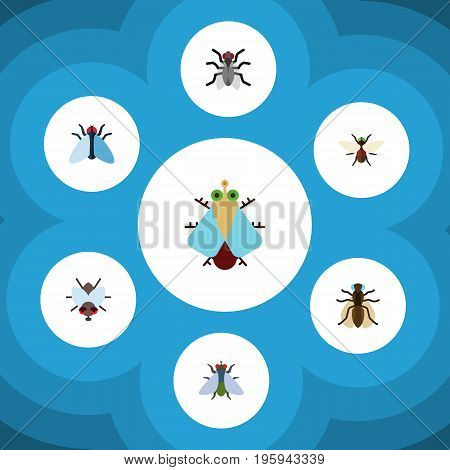 Flat Icon Buzz Set Of Buzz, Tiny, Housefly And Other Vector Objects