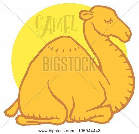 Cute cartoon camel dromedary - mascot or logo template
