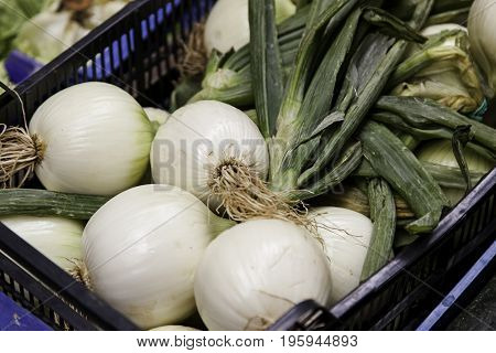 Fresh Onions In A Traditional Market