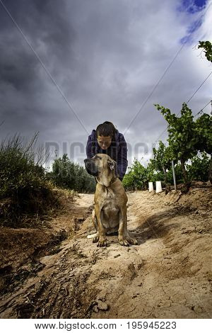 Young Woman With Dog Hound In Nature