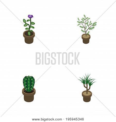 Isometric Houseplant Set Of Houseplant, Flower, Fern And Other Vector Objects