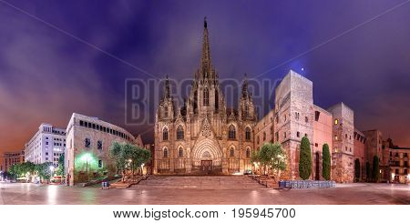 Panorama of Cathedral of the Holy Cross and Saint Eulalia in the moonlit night, Barri Gothic Quarter in Barcelona, Catalonia, Spain