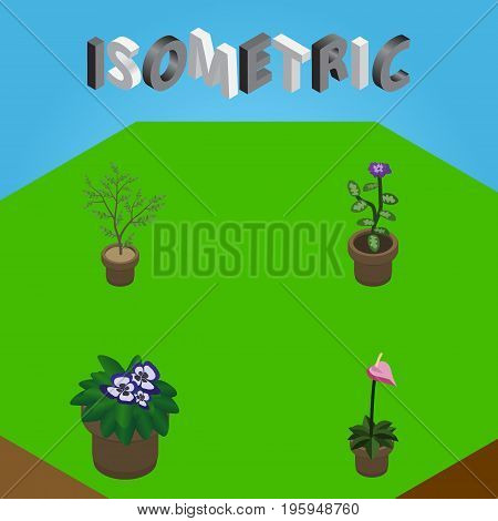 Isometric Flower Set Of Grower, Flowerpot, Fern And Other Vector Objects