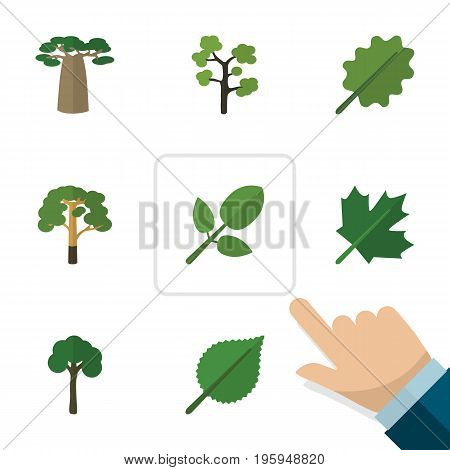 Flat Icon Ecology Set Of Garden, Foliage, Wood And Other Vector Objects