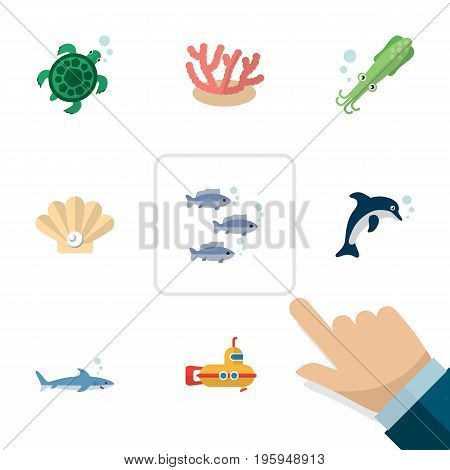 Flat Icon Nature Set Of Octopus, Tortoise, Playful Fish And Other Vector Objects