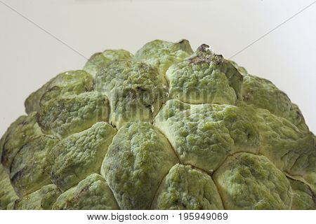sugar apple fruit tropical round healthy exotic