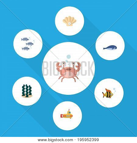 Flat Icon Sea Set Of Cachalot, Periscope, Cancer And Other Vector Objects
