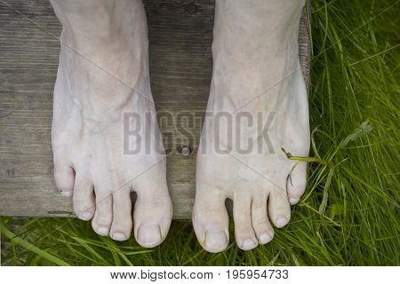 Human bare feet resting on the wooden steps green grass in the background overhead view