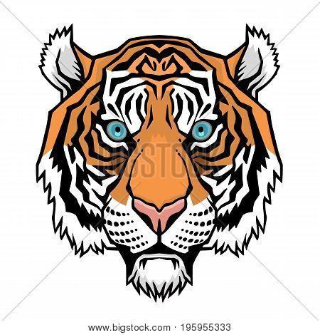 Tiger head. Vector illustration of a tiger head.