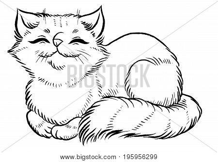 fluffy cat comfortably sleeps  - cartoon cute cat character vector illustration